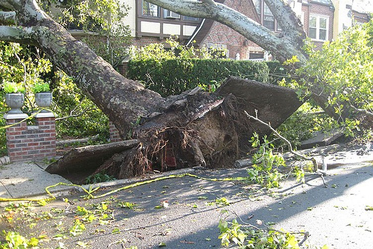 Wind and Property Damage: What You Need to Know